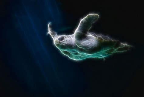 Sea Turtle Animated Wallpaper - sea turtle animated wallpaper desktopanimated