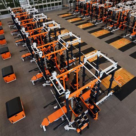hammer strength olympic weight flat bench life fitness