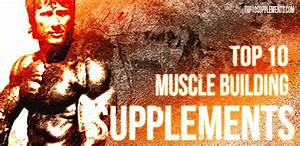 Best Supplement Products For Building Muscle 101  Nutritional Benefits Jowar Roti John