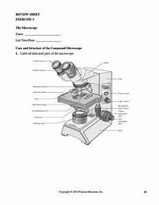 Exercise 3 The Microscope Pre Lab Quiz