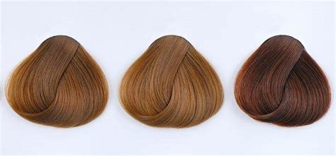 Brown Shades Of Hair by Shades Of Brown Hair
