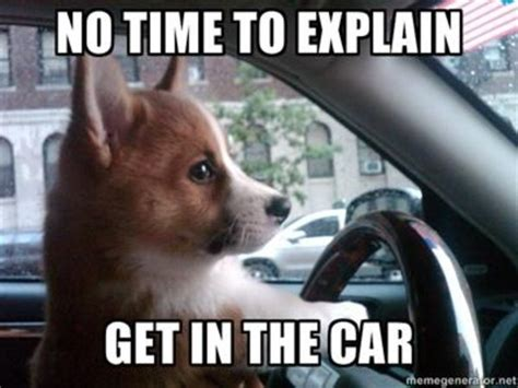 Dog In Car Meme - there s no time to explain know your meme