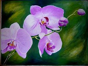 Orchid | A Painting A Week