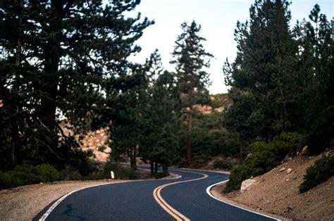imagen gratis camino bosque camino manera paisaje