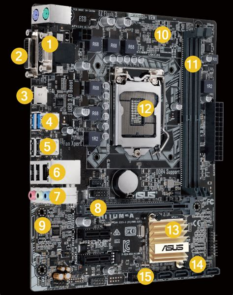 hm  motherboards asus usa