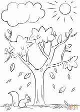 Coloring Tree Pages Autumn Fall Printable Drawing Colorings sketch template