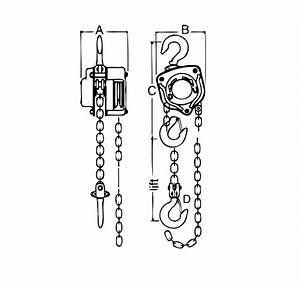 Vital Chain Diagram