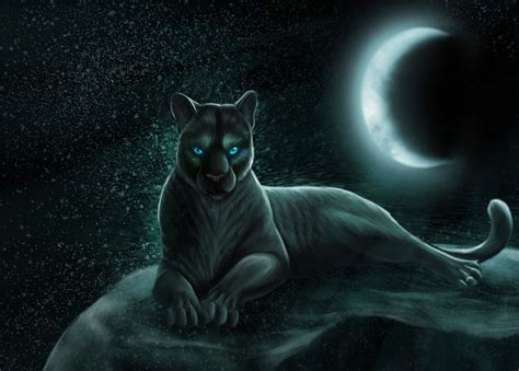 panther animal art wallpaper  animals wallpapers