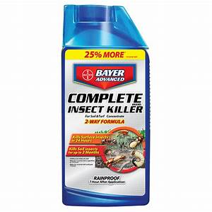 Shop BAYER ADVANCED Complete 32 fl oz Insect Killer at