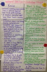 Types Of Rna Chart Mrs Paul Biology Biology Notes Charts 2015 2016