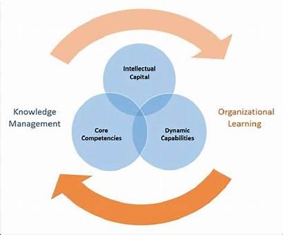 Organizational Learning Knowledge Capabilities Organization Healthcare Performance