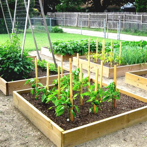 raised vegetable garden plans cuoxdks sky designs homelk