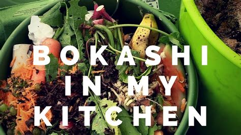 bokashi compost   kitchen youtube
