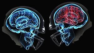 It U0026 39 S Time For The Nfl To Stop Hiding The Cte Crisis