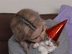 Cat Celebration GIF by HelloGiggles - Find & Share on GIPHY