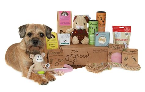 treats great subscription gift boxes  dogs  cats