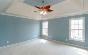 Home Design Interior Painting Ideas For Hall The
