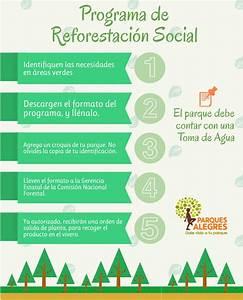 Programa de Reforestación Social Parques Alegres I A P