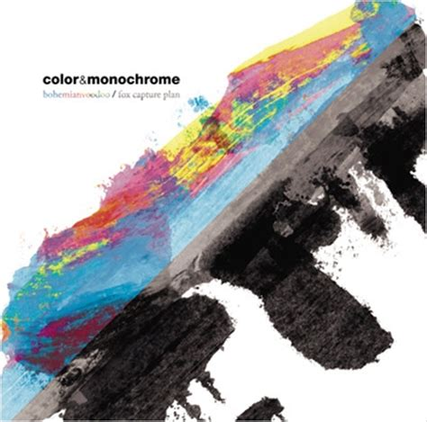what is monochrome color color monochrome bohemianvoodoo fox capture plan