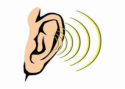 Ears Hear Hearing Ear