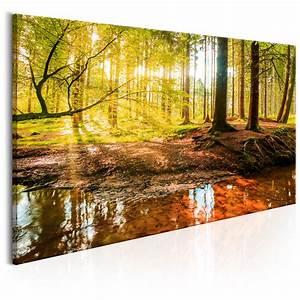 Bilder Natur Leinwand : leinwand bilder xxl kunstdruck bild wald natur c b 0174 b a ebay ~ Markanthonyermac.com Haus und Dekorationen