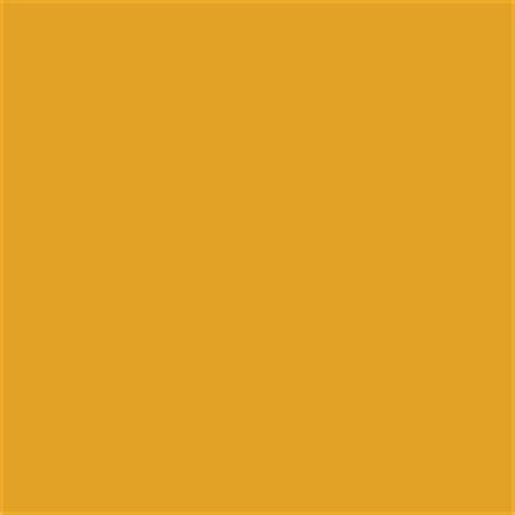nugget gold mustard pantone