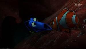 Inside Whale Finding Nemo