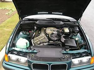 Under The 318i Hood  1995 Vs  1996