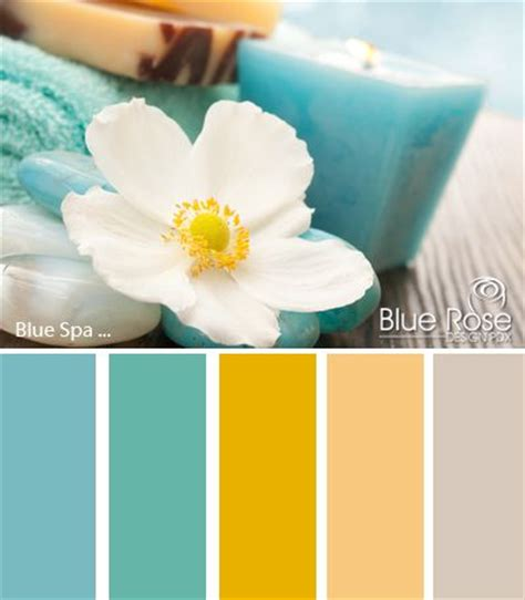 Spa Bathroom Color Schemes by 1000 Ideas About Spa Colors On Aqua Paint