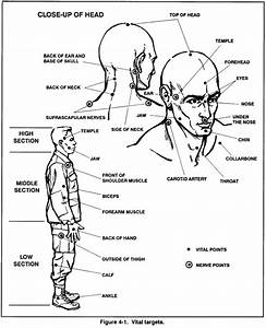 Self Defense Pressure Points Chart How To Win A Fight At School Updated