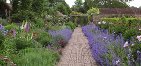 how to design a herbaceous border the beauty of an herbaceous border gardening uk