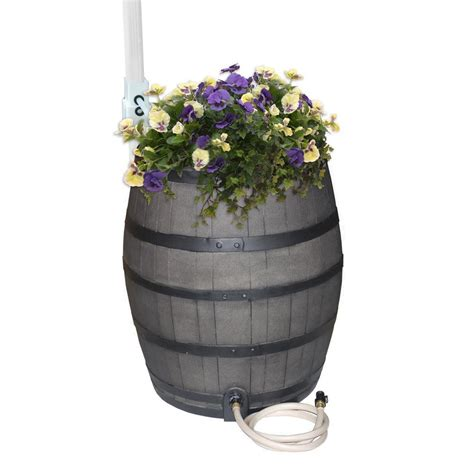 whiskey barrel planter home depot rescue 50 gallon solid brown flat back whiskey barrel