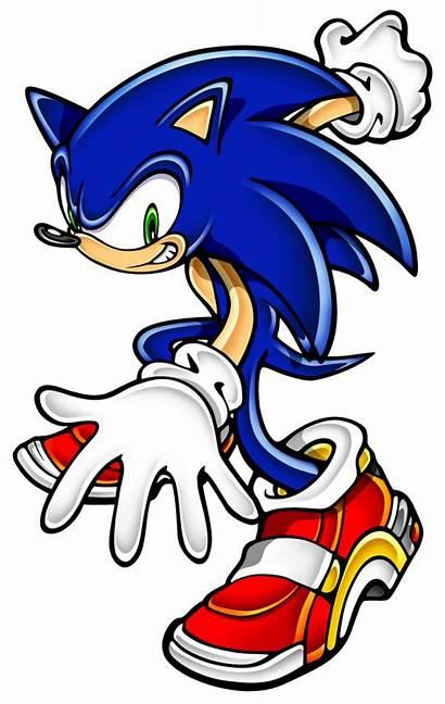 Sonic Hedgehog Wikia Wiki Characters Cartoon Heroes