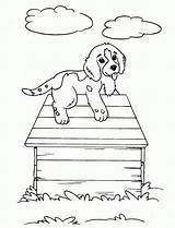 Hound Coloring Pages Dog Printable Bassett Basset Sheets sketch template