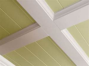 Kitchen Paneled Kitchen Ceiling pictures, decorations