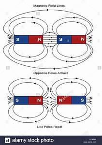 Diagram Of Magnetic Field Lines  Opposite Poles Attract  And Like Stock Photo
