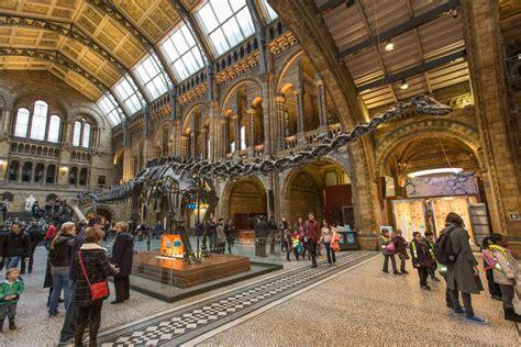 digitising  hidden treasures   natural history