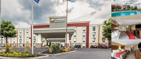 comfort suites knoxville tn comfort inn 174 suites knoxville tn 7737 kingston pike 37919