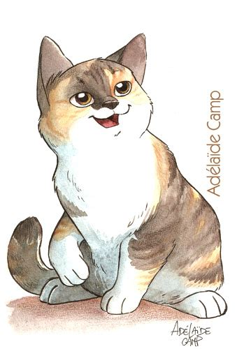 adelaide camp illustratrice dessin de chat