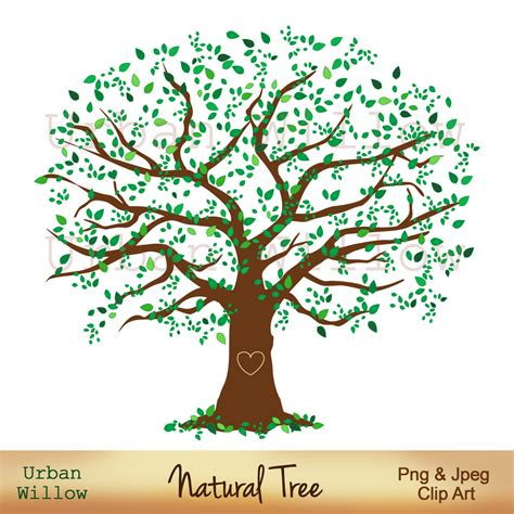 Family Tree Clipart Larger Clipart Family Tree Pencil And In Color Larger