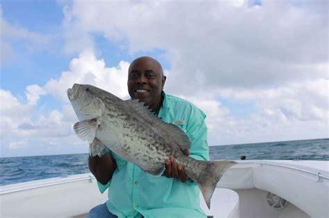 grouper fishing miami fowey fish rocks bottom bite miamifishing