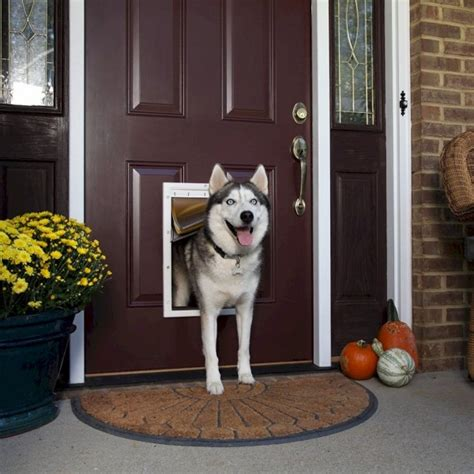 petsafe weather pet door petsafe weather pet door large