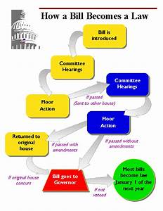 How A Bill Becomes A Law  With Images