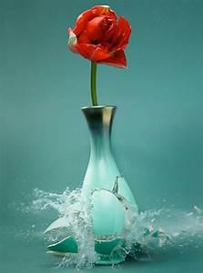 Exploding Flowervases by Martin Klimas - Plant Propaganda