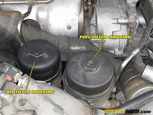 Fuel Filter Location