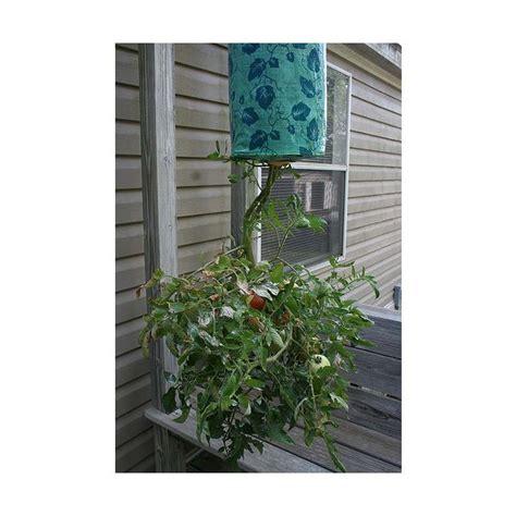Hanging Vegetable Garden by Gardening Planning Vegetable Herb Gardens In City