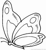 Coloring Cartoon Caterpillar Flower Pages Butterfly sketch template