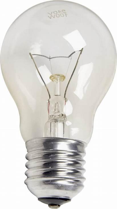 Lamp Lightbulb Lantern Transparent Clipart Lalten Freepngimg