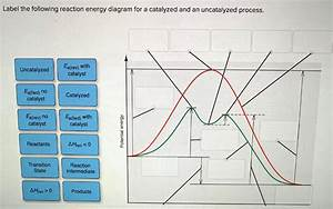 31 Label The Following Reaction Energy Diagram For A