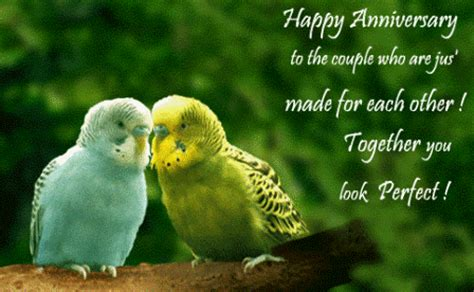 splendid  heart touching wedding anniversary wishes funpulp